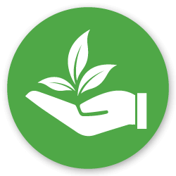 preserving the environment icon